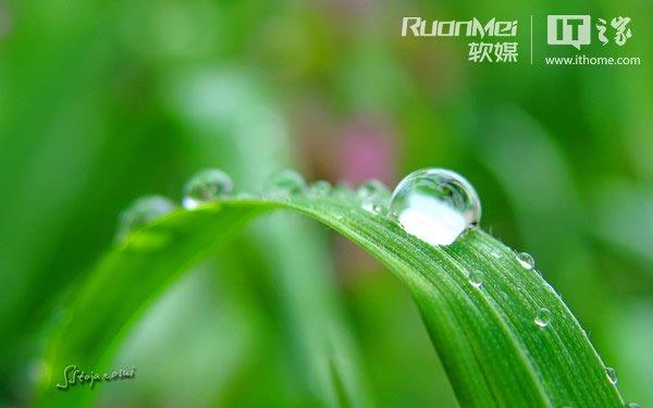 《雨滴戏露珠》,该主题探索了大自然中那无以伦比的图片