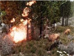 美國天氣預報又帶來3D立體新作:模擬森林大火,效果震撼