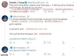 虚假马斯克账户借特朗普推文行骗,数小时获利逾25万