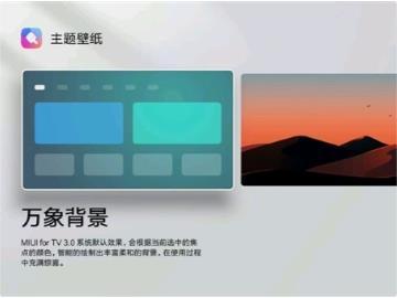 小米电视智能系统MIUI for TV新功能:主题壁纸上线