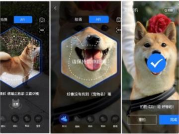 杭州上線寵物鼻紋身份證,有望成為國內首個數字養寵城市