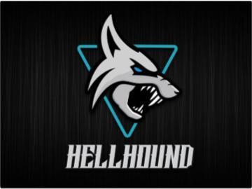 撼讯 RX 6700 XT Hellhound 系列 Logo 曝光