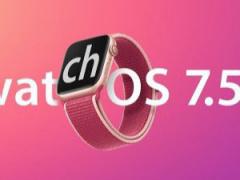苹果 watchOS 7.5 开发者预览版 Beta 2 发布