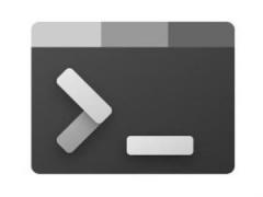 微軟 Windows Terminal 1.10 預覽版發布,支持任務欄后臺常駐