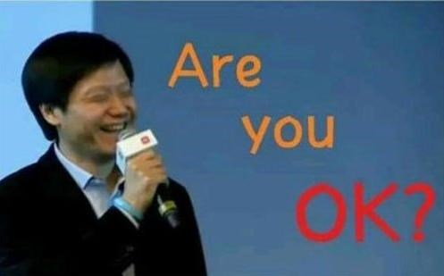 小米去年赚134亿:雷军年薪百亿,获发B股作薪酬