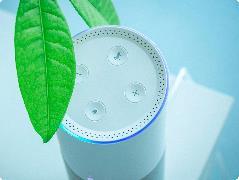 【IT之家评测室】腾讯听听智能音箱评测:699元的听歌利器